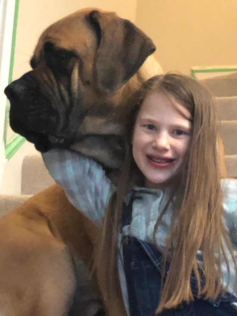 Fostered Mastiff and child sitting on steps