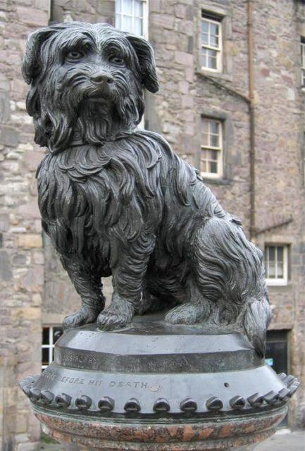 monument of a dog