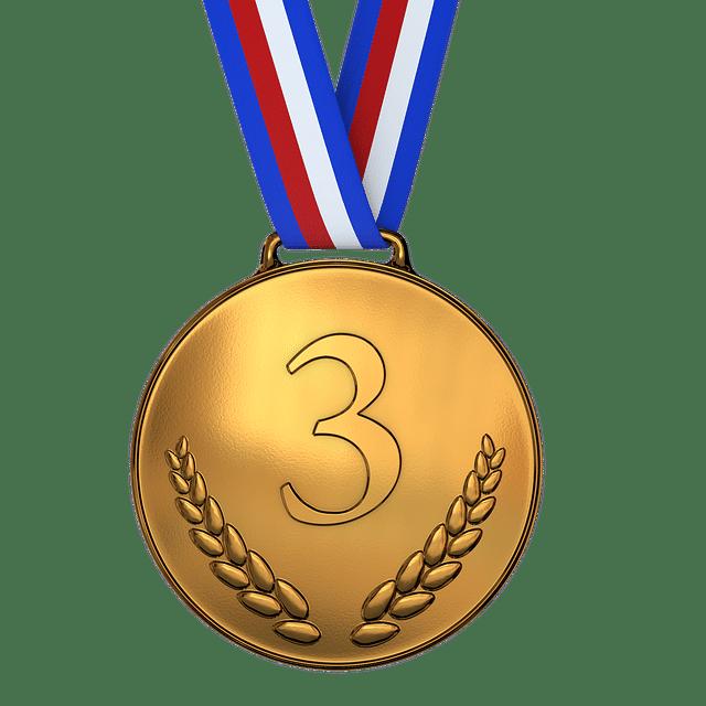 medal, bronze, 3d place award