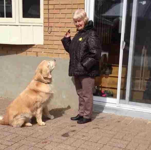 Neighbor giving Cheddar a treat outside her patio door