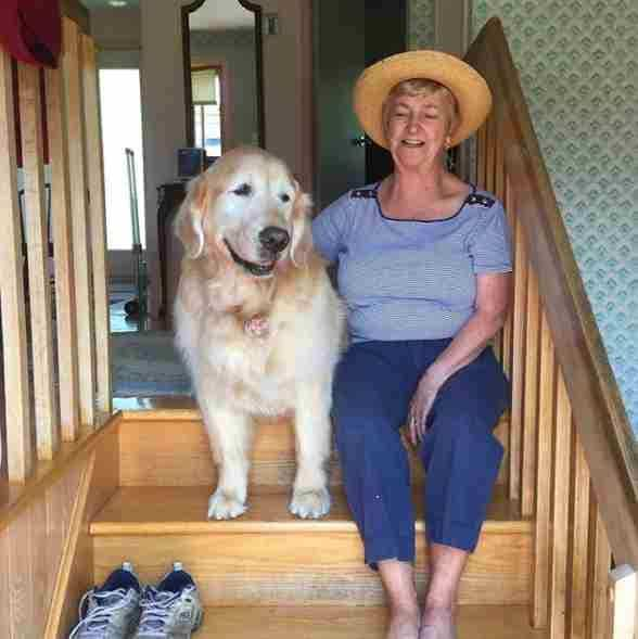 Dog and his favorite neighbor sitting on inside steps