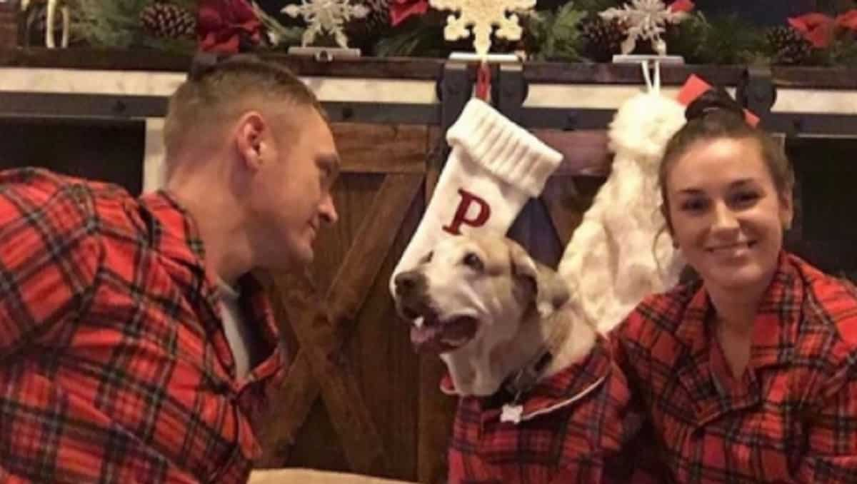 oldest shelter dog with family at Christmas