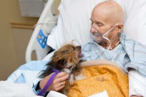 man and dog in hospice bed saying goodbye